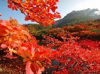 【秋旅】紅葉シーズンの那須塩原を満喫!≪ほろ酔い温泉旅♪≫創作料理×源泉かけ流しのぬる湯