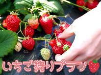 ★季節限定★春のいちご狩と創作料理コース〔1泊2食付〕