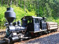 【赤沢森林鉄道 往復乗車券】大人100円・子ども無料♪澄んだ空気、雄大な美林を縫って走る森林鉄道に乗車!