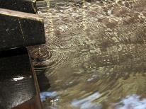 【素泊り】チェックイン21時までOK!源泉掛け流しの天然温泉を堪能♪【平日限定】