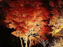【秋限定】秋の味覚を満喫★紅葉祭り★ワカサギ釣り★思い出いっぱいの旅行[1泊2食付]