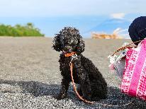 【ペット専用】わんちゃんと旅行するなら福田家へ◆世界遺産「三保の松原」を愛犬と一緒に歩こう ♪