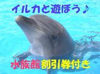 【下田海中水族館】割引券特典付★イルカと遊ぼう♪-大漁舟盛コース-