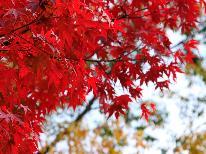 秋の紅葉旅行!【身延山の紅葉と下部温泉】四季会席を楽しむプラン!特典付き【1泊2食付】