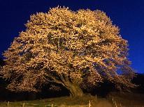 【GW】は片品へ!話題の《水芭蕉の森》 天然記念物《天王桜》 を観に行こう♪ 【1泊2食】