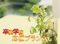 【期間限定特別割引】卒業旅行に★春の伊豆高原と懐石料理を満喫♪貸切露天風呂無料