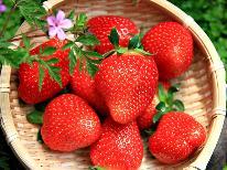 ≪春限定≫旬の真っ赤ないちごを堪能!嬉しいデザート付♪郷土料理と温泉堪能プラン[1泊2食]