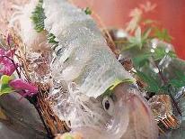 【期間限定:漁火輝く日本海の贈り物】 リピート続出☆彡 『活白イカ姿造りプラン』