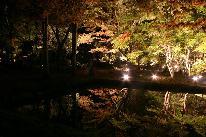 【秋旅★紅葉】逆さ紅葉に感動♪曽木公園のライトアップを見に行こう♪