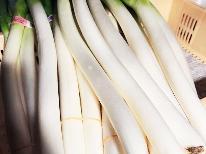 【新潟県★収穫体験付特別宿泊プラン】★越後美人『やわ肌ねぎ』収穫体験&お土産付の旅◎第三弾