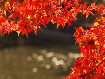 《阿賀野川ライン遊覧船》紅葉と温泉街の景色を楽しむ遊覧船と美肌の湯の硫黄泉で咲花の魅力に触れる旅