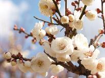 お正月は伊豆長岡温泉で♪特別料理と温泉でゆったり【特典】