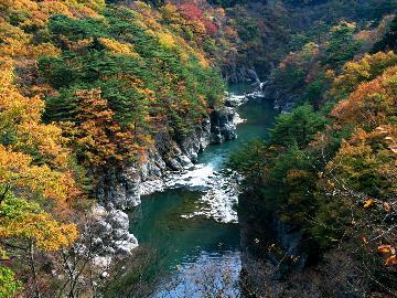 【カジュアル】大自然が創り出した渓谷美を満喫☆美しい紅葉を楽しむ鬼怒川ライン下り