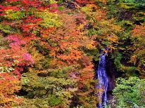 【西沢渓谷】紅葉と秋の味覚♪人気の西沢渓谷トレッキングプラン!当館より車で30分