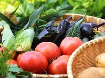 《夏季限定》緑豊かな奥飛騨を満喫☆彩り鮮やかな夏野菜たっぷり!夏の味覚プラン 【1泊2食付】