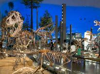 世界が注目!!【恐竜博物館入場チケット付き】地球46億年物語プラン(=゚ω゚)ノ