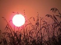【秋の優雅旅】 秋の味覚と夕日100選の絶景に出会う。ふるさとの湯割引券+野沢菜の種お土産つき!