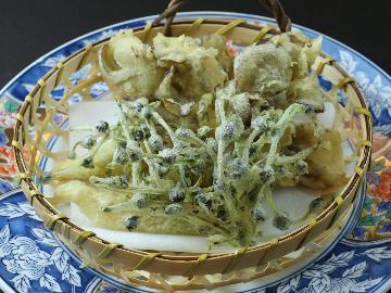 春風薫る山の恵みを召し上がれ♪新鮮な山菜を味わって、源泉かけ流しの湯を堪能~春のヘルシーグルメ旅~