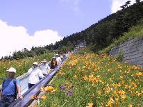【翌日昼食お弁当付き】 志賀高原ウォーキングプラン(1泊3食)