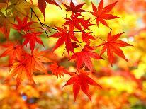 【秋限定】<1泊2食付8,000円(税別)~>行楽シーズン!お得に秋満喫プラン♪