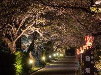 岳温泉ならではの桜の楽しみ方!鏡ヶ池公園に続く桜咲く桜坂をお散歩しよう♪