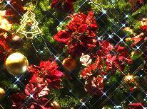 ★☆ クリスマス限定 ☆★~選べるハーフボトル特典付~ ホワイトクリスマスは清里で♪《1泊2食付》