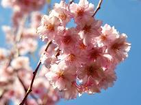 【二人旅行】 春のワクワクプラン♪ 年代別&性別で選べる♪嬉しい特典付!! 【1泊2食付】