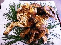 【松茸土瓶蒸し付★】秋限定!小会瀬の『きのこ祭』秋の味覚満載!きのこ料理と紅葉を楽しむ