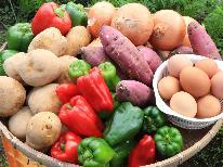 【1泊朝食】自家農園の採れたて野菜で元気に1日をスタートしよう☆
