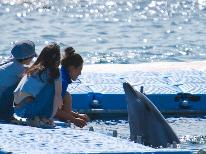 <HP限定価格>【期間限定】イルカふれあいビーチ体験★夏は西浜海水浴場で遊ぼ~♪♪