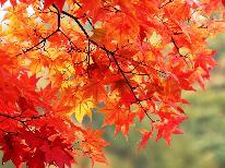 【秋の優雅旅】 ゆったり温泉を楽しむための★5大特典付き★涼しい秋と名湯を満喫 ~基本コース~
