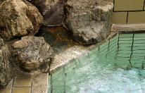 【素泊まり】源泉かけ流し温泉でゆっくり過ごす♪お食事なしプラン