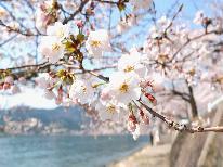 琵琶湖を華やかに彩る桜並木『海津大崎』**春のお花見プラン -特典付-【1泊2食】