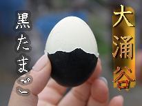 【50組限定!】大涌谷の名物!黒玉子 ☆無料引換券☆【特典】 朝食付きプラン