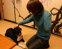 【ペットも一緒に♪】家族の大切な一員、愛犬も一緒に珠洲を愉しむ ≪1泊2食付≫