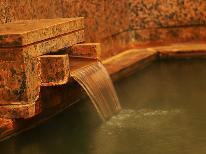 【東北限定】【湯治】源泉かけ流し天然100%の肘折温泉でのんびり温泉浴!温泉と懐かしの温泉街をぶらり旅♪