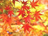 【紅葉の秋旅】2大特典付き☆夕食はきのこの特別料理&お土産付き!なのに料金そのまま!【1泊2食付】