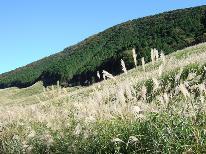 【秋・紅葉】箱根の秋の風物詩・ススキ草原と紅葉★にごり湯と旬のお料理を楽しむ[特典付]