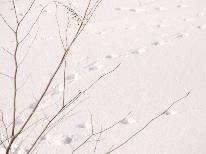 年末年始・連休は2泊3日滞在で☆苗場の冬をたっぷり満喫宿泊プラン 【2泊4食付】