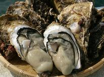 【夏の膳~岩牡蠣~】10,000円ポッキリ☆《匠の膳~takumi~》×《生牡蠣》で越後の旬を食らう