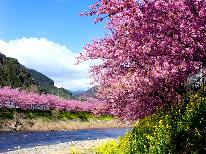 【3月10日までの期間限定】早春を河津桜で感じるぽかぽかプラン☆[1泊2食付]