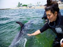 ☆日間賀島ドルフィンビーチ2018☆イルカとふれあい&新鮮舟盛と選べる1品料理で舌鼓