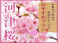 ★河津桜×駿河湾の新鮮海の幸×温泉★春を先取り満喫♪舟盛付き