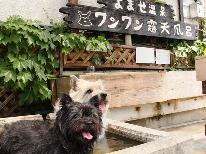 【直前割】ペットと過ごす 温泉旅行!当館のスタンダード プランが 1000円OFF!
