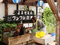 【3月4月限定】部屋&食事おまかせ♪お一人様 9800円ポッキリ!!格安な直前予約。春得プラン