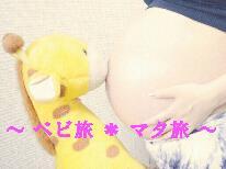 【赤ちゃん・妊婦さん歓迎】ママになる前の特別な旅行に…★マタニティプラン≪人気No.1洋食コース≫
