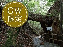 2019【GW限定×連泊】人気の創作コースでおもてなし☆屋久島満喫プラン♪
