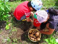 【収穫体験】旬のジャガイモを楽しく収穫&食べる♪お得なお土産付き■1泊2食