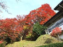 【秋の篠山を満喫☆】~ささやま紅葉巡り~ご夕食は篠山名物ぼたん鍋コース☆彡