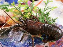 【伊勢海老×海鮮料理】豪華にいくならこれでしょ?伊勢海老付海鮮料理